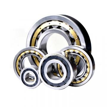 190 mm x 340 mm x 55 mm  NACHI NF 238 Cylindrical roller bearing